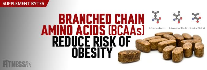 Branched-Chain Amino Acids Reduce Obesity Risk