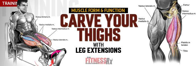 Carve Your Thighs