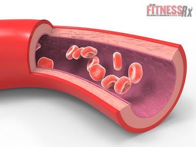 Citrulline - Improves Blood Vessel Health