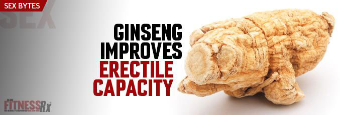 Ginseng Improves Erectile Capacity