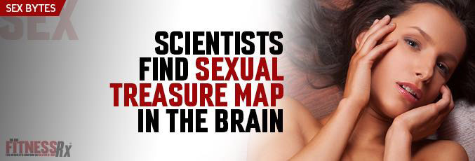 Scientists Find Sexual Treasure Map in the Brain