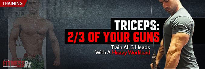 Triceps: 2/3 Of Your Guns