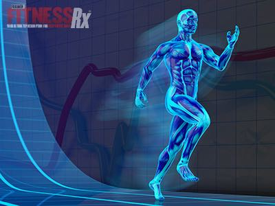 Caffeine, Creatine, and Amino Acids - Boost High-Intensity Interval Training Performance
