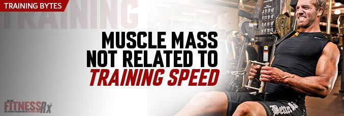 Muscle Mass Not Related To Training Speed