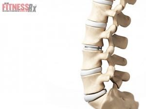 Lab–Grown Artificial Spinal Disks Could Save Your Back