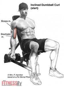FST - Функционально-силовой тренинг: Sharpen Your Biceps ...