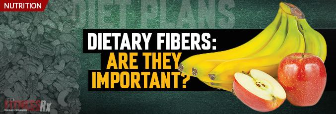Dietary Fibers: Are They Important?