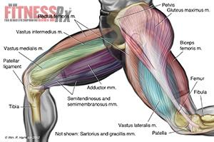 Powering Your Thighs and Hips with Walking Lunges