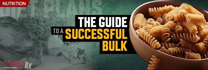 The Guide To a Successful Bulk
