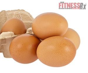 EGG-stra EGG-stra – Read All About Egg Protein