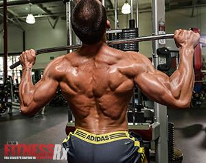 Back Training: How To Do It Right