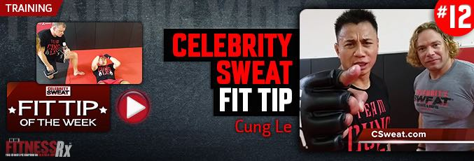 Celebrity Sweat Fit Tip Cung Le