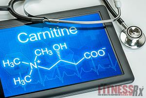 L-Carnitine - The Ultimate Fat Burner