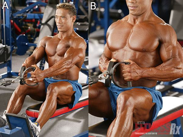 BEEF UP YOUR BACK - A Scientific Approach To A Wide, Thick Back