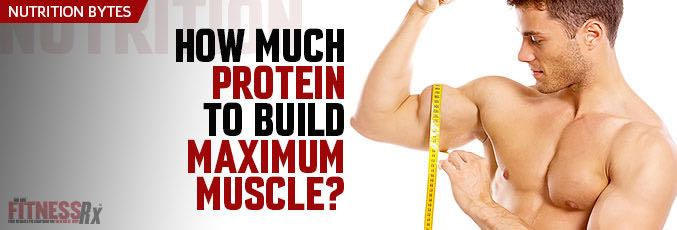 How Much Protein To Build Maximum Muscle?