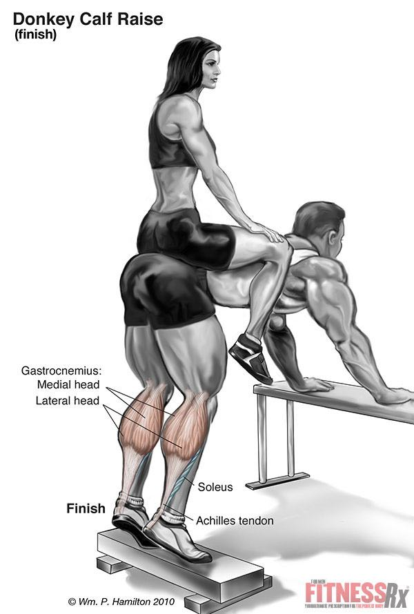 THE BEST CALF EXERCISE - See What The Studies Say