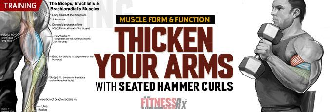 Thicken Your Arms
