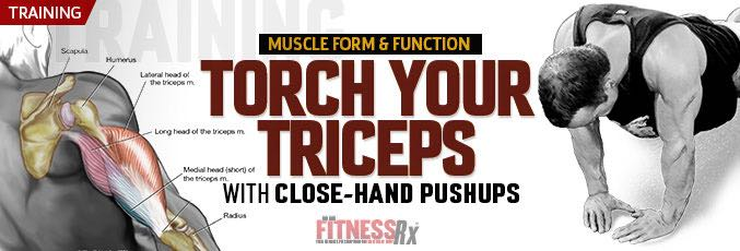 Torch Your Triceps