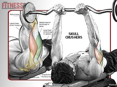GROW YOUR TRIS - With Skull Crushers