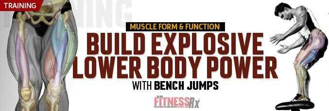 Build Explosive Lower Body Power