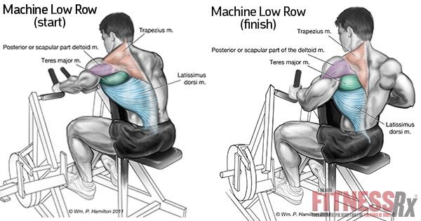 MACHINE-LOW-ROWS-insFB