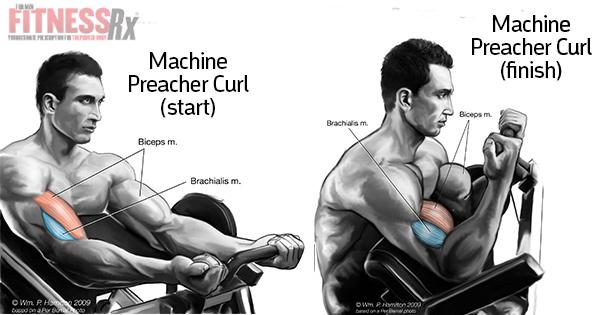 Build Denser Biceps With Machine Preacher Curls