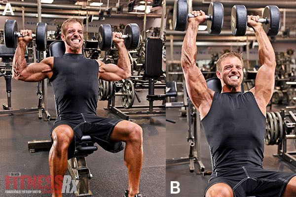 Seated Dumbbell Presses