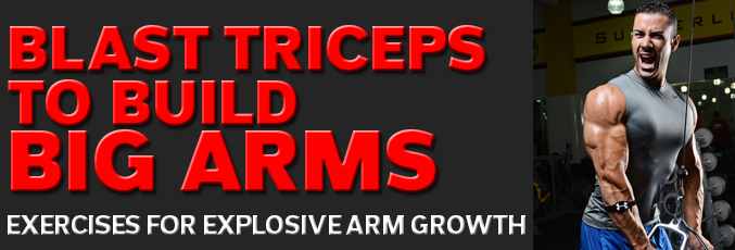 Blast Triceps to Build Big Arms