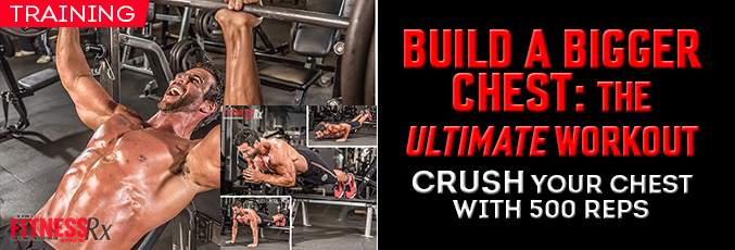 Build a Bigger Chest: the Ultimate Workout