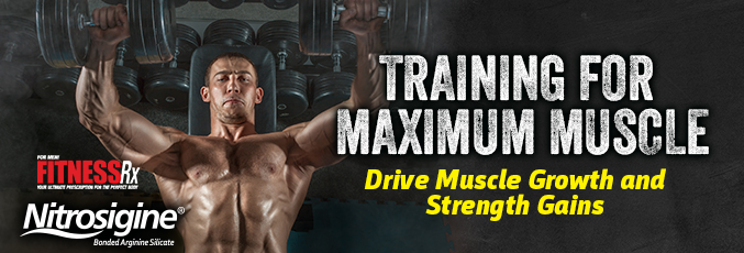 Training for Maximum Muscle