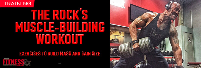 The rock's Muscle Building Workout