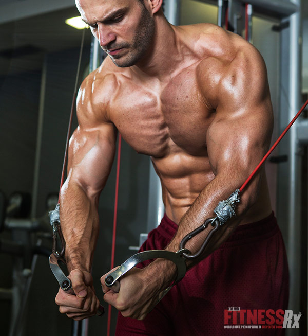The Trigger For Optimum Muscle Growth - mTORC