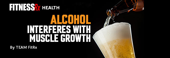 Alcohol Interferes with Muscle Growth