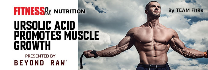 Ursolic Acid Promotes Muscle Growth