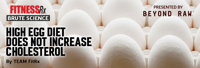 High Egg Diet Does Not Increase Cholesterol