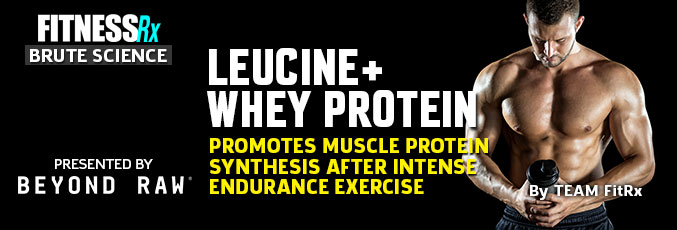 Leucine Plus Whey Protein Promotes Muscle Protein Synthesis After Intense Endurance Exercise