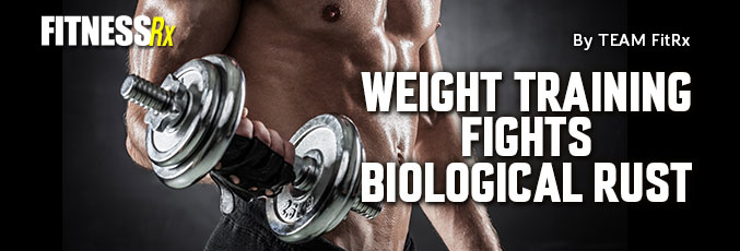 Weight Training Fights Biological Rust