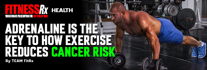 Adrenaline Is the Key to How Exercise Reduces Cancer Risk