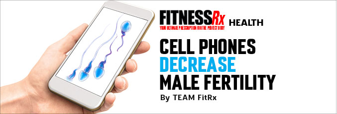Cell Phones Decrease Male Fertility
