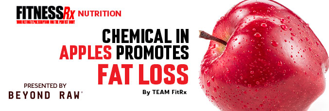 Chemical in Apples Promotes Fat Loss