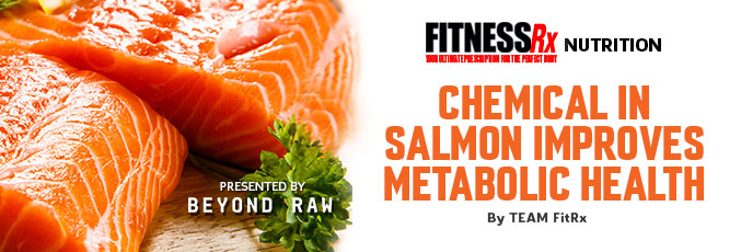 Chemical in Salmon Improves Metabolic Health