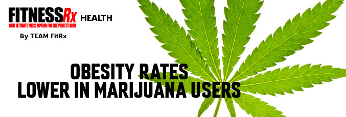 Obesity Rates Lower in Marijuana Users