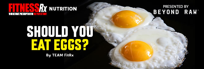 Should You Eat Eggs?
