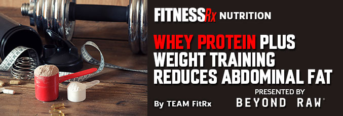 Whey Protein Plus Weight Training Reduces Abdominal Fat