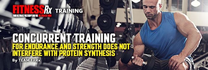 Concurrent Training For Endurance and Strength Does Not Interfere With Protein Synthesis