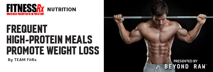Frequent High-Protein Meals Promote Weight Loss