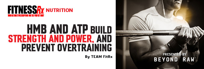 HMB and ATP Build Strength and Power, and Prevent Overtraining