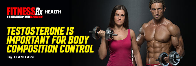 Testosterone Is Important For Body Composition Control