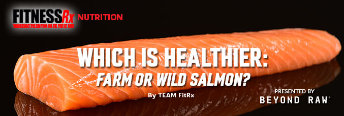 Which Is Healthier: Farm or Wild Salmon?