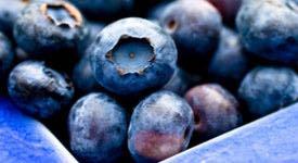 Neuroprotective Benefits of Blueberries